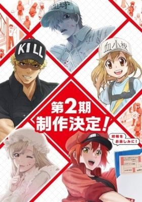 Cells at Work!! (Dub)